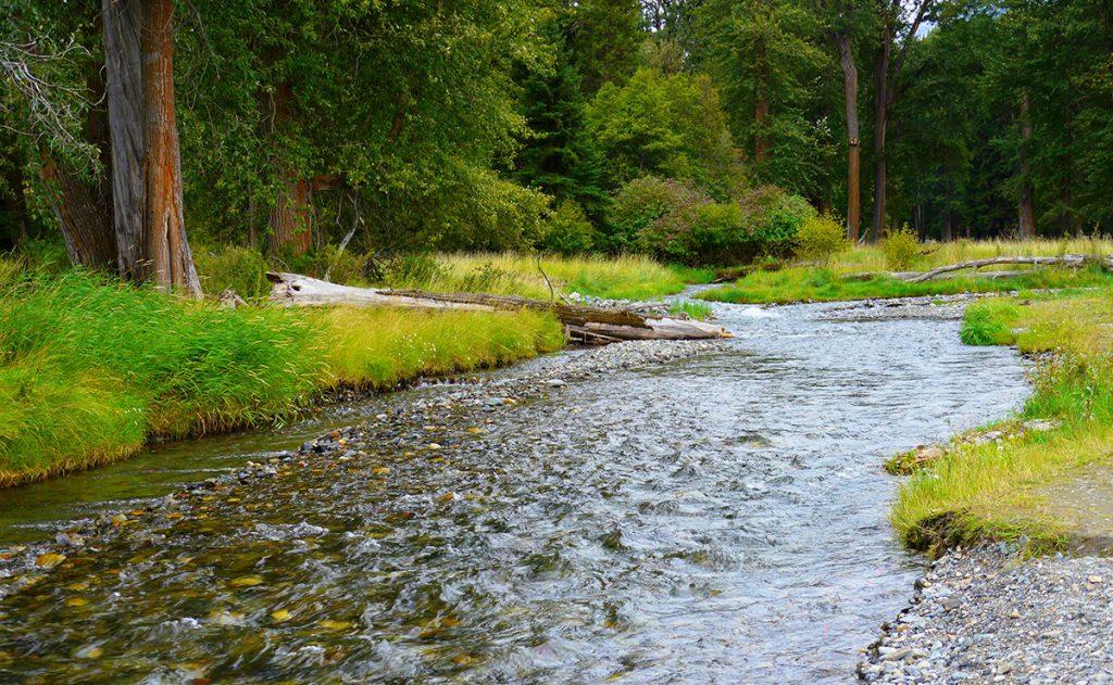 Wallowa River near Wallowa Lake, Oregon