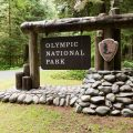 Olympic National Parl Sign