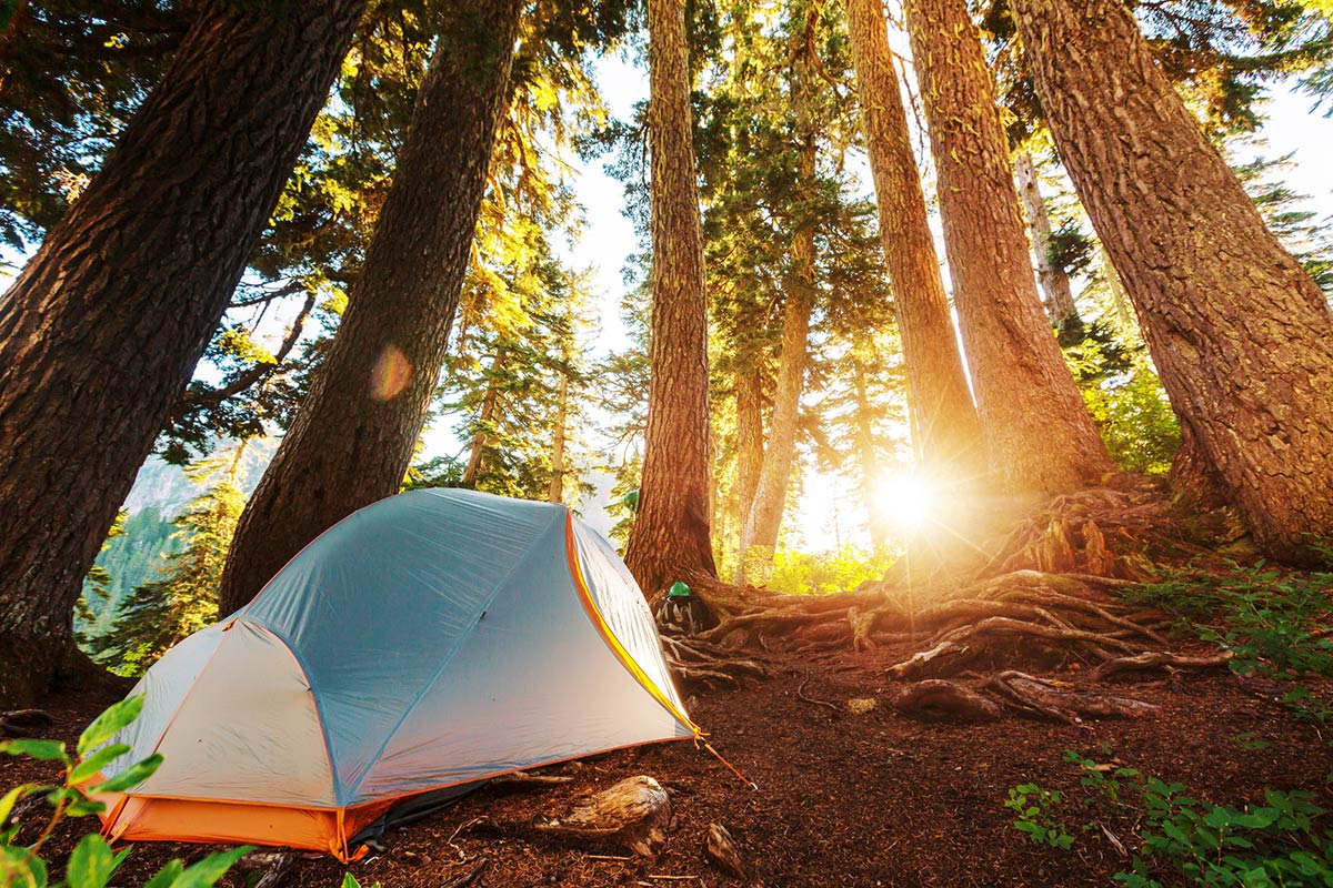 Complete Blackout Tent Buyer's Guide   Get Sleep In A Dark